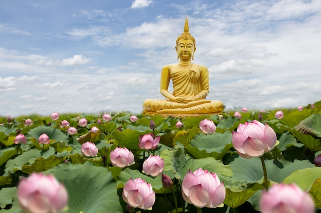 Złoty Budda Z Kwiatami Lotosu Premium Zdjęcia
