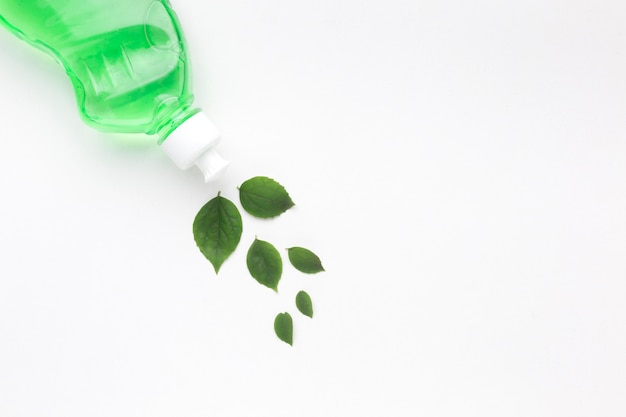 Zmywa Detergent Liśćmi Darmowe Zdjęcia