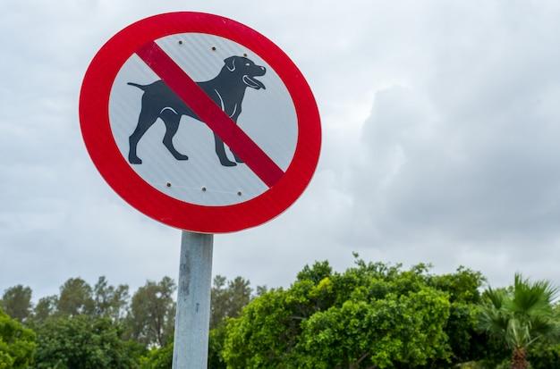 Znak Drogowy, Zabronione Wyprowadzanie Psów Premium Zdjęcia