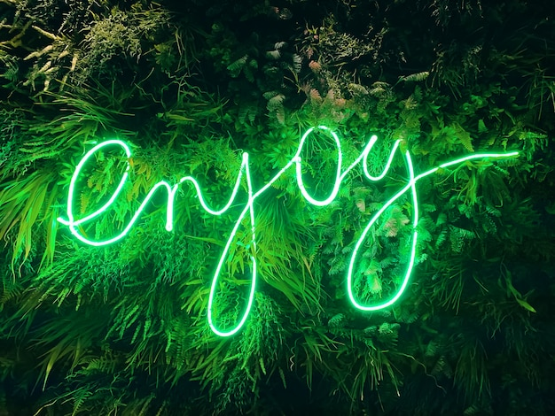 Znak Led Z Napisem Enjoy Premium Zdjęcia