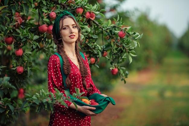 Żniwa Na Wsi. Piękna Młoda Dziewczyna W Czerwonej Sukience Zbieraj Dojrzałe Jabłka W Fartuchu W Sadzie Jabłkowym. Premium Zdjęcia