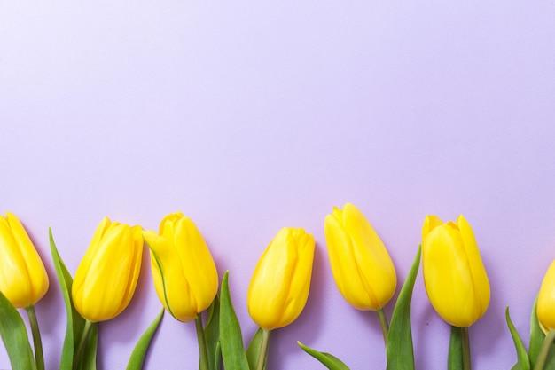 Żółci Tulipany Na Lilym Tle. Ramka W Kwiaty. Karta Wiosny Z Miejsca Kopiowania. Premium Zdjęcia