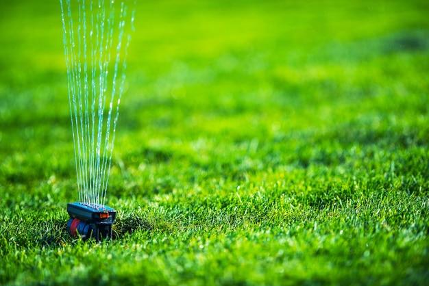 Zraszacz Polowy Do Trawy Ogrodowej. Systemy Nawadniania Trawników Ogrodowych. Premium Zdjęcia