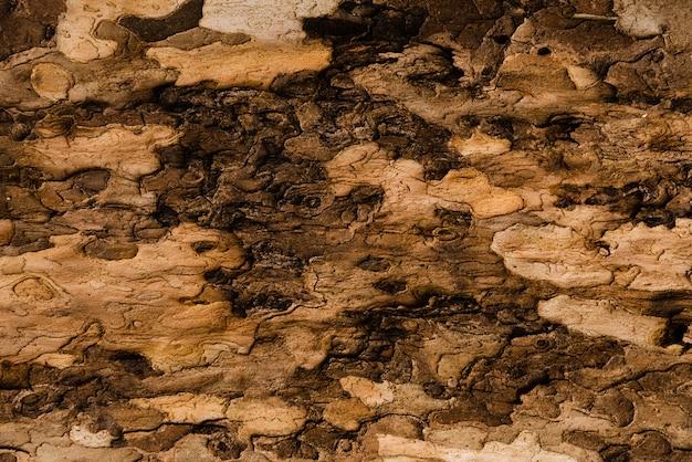 Żwiru Tła Tekstura Dla Outdoors Projekta Darmowe Zdjęcia