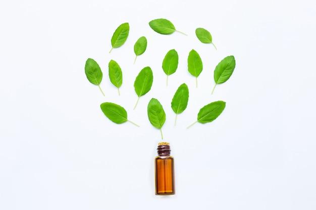 Aceite esencial de albahaca santa en una botella de vidrio con hojas frescas de albahaca sagrada Foto Premium