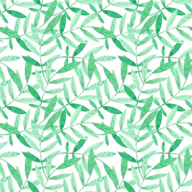 Acuarela de patrones sin fisuras con ramas verdes sobre blanco Foto Premium