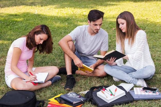 Adolescentes estudiando juntos en el parque Foto gratis