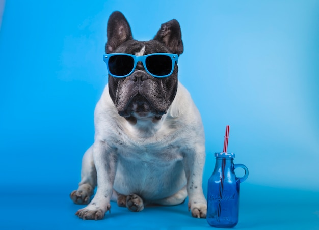 Adorable bulldog francés con gafas de verano Foto Premium