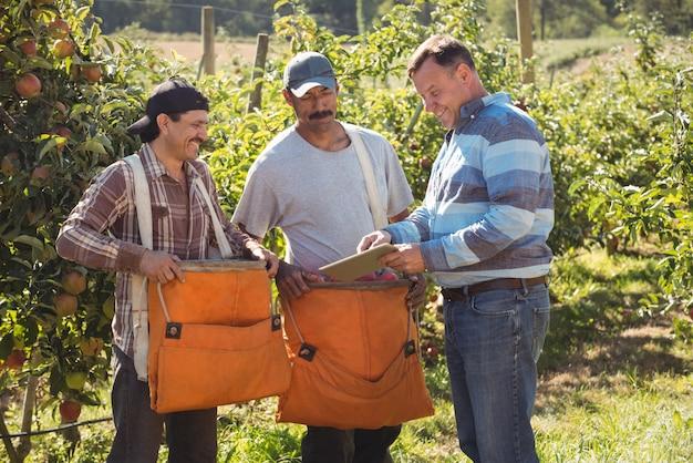 Agricultor interactuando con agricultores en huerto de manzanas Foto gratis