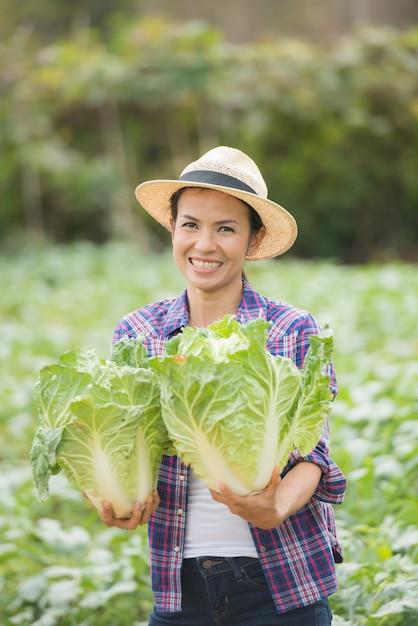 Los agricultores están trabajando en la granja de repollo chino Foto gratis