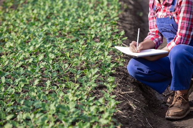 La agricultura investiga variedades de flores, conceptos agrícolas modernos. Foto gratis