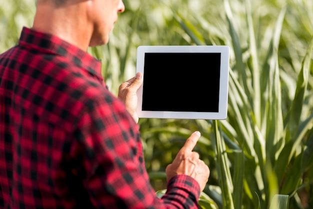 Agrónomo de maquetas con una tableta en un campo de maíz Foto gratis