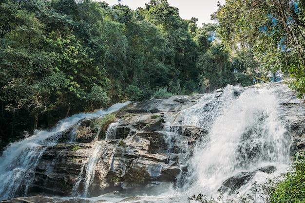 Agua que cae entre las rocas de una cascada a la sombra de los árboles de la selva. Foto Premium