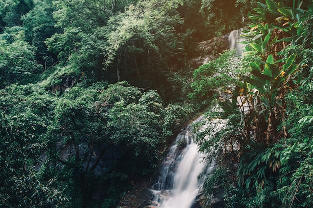 Agua suave de la corriente en el parque natural, hermosa cascada en la selva tropical Foto Premium