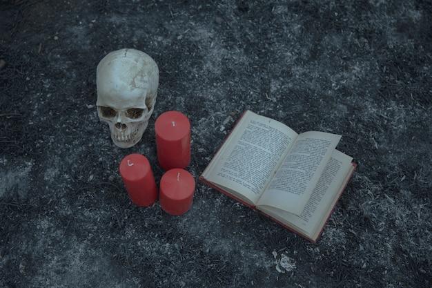 Alta vista del arreglo de brujería con calavera y libro de encantamientos Foto gratis