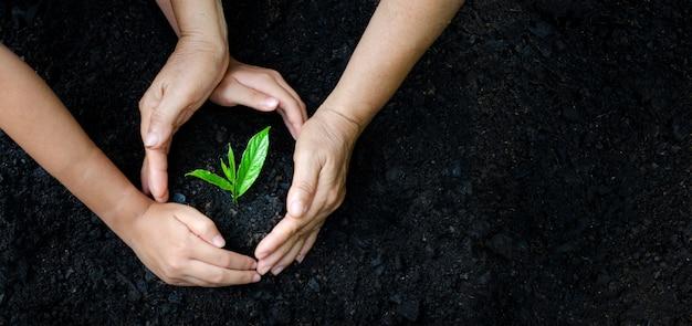 Resultado de imagen de manos con arboles