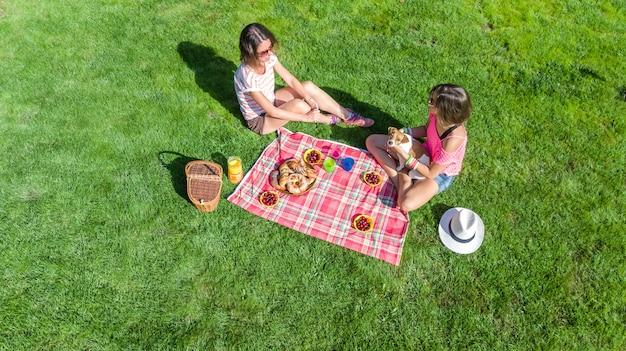 Amigas con perro haciendo un picnic en el parque, niñas sentadas en el césped y comiendo comidas saludables al aire libre, vista aérea desde arriba Foto Premium