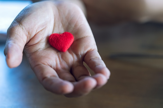 Ancianos manos femeninas dando poco corazón rojo. Foto Premium