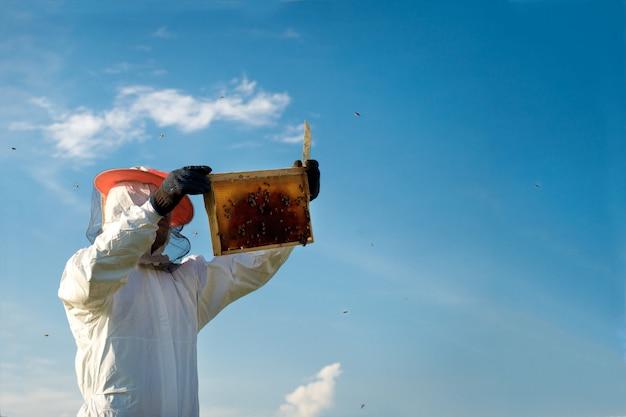 Apicultor sosteniendo un panal lleno de abejas. Foto Premium