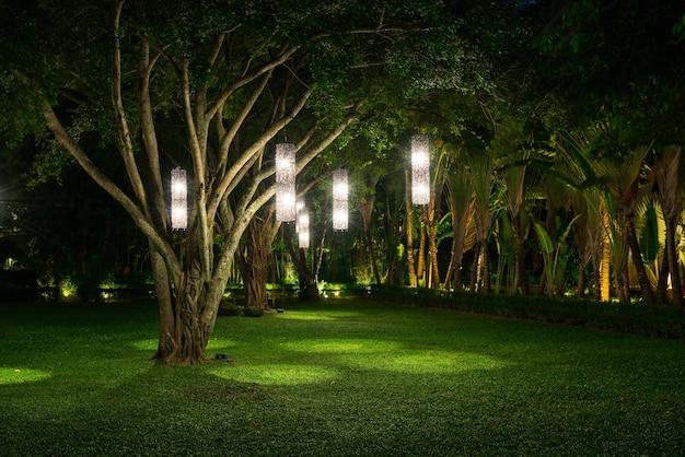 Árbol con iluminación de la lámpara Foto gratis