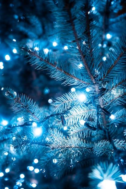 Árbol de navidad con conos en una calle de la ciudad iluminada con una guirnalda. Foto gratis