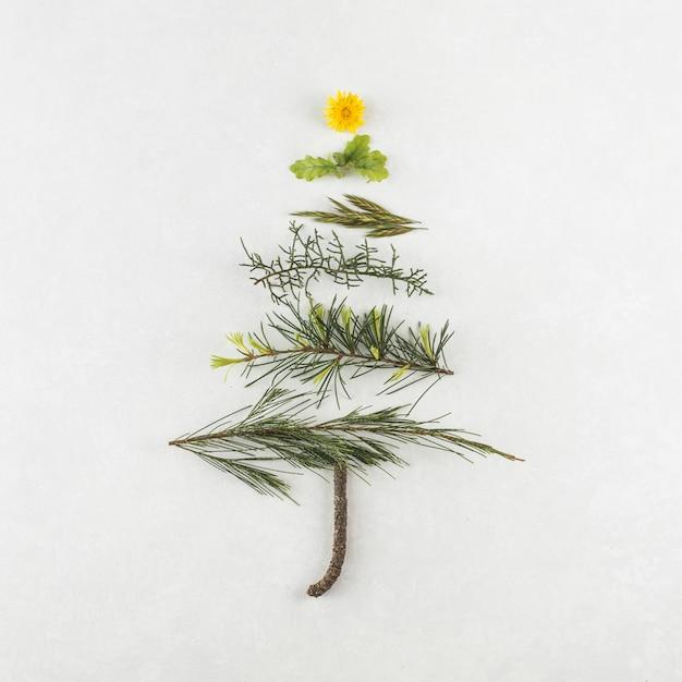 Árbol de navidad de diferentes ramas. Foto gratis