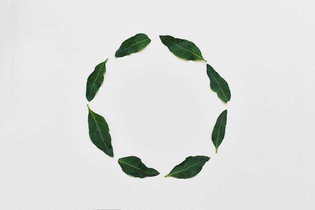 Arreglo creativo hecho de hojas grean naturales Foto Premium