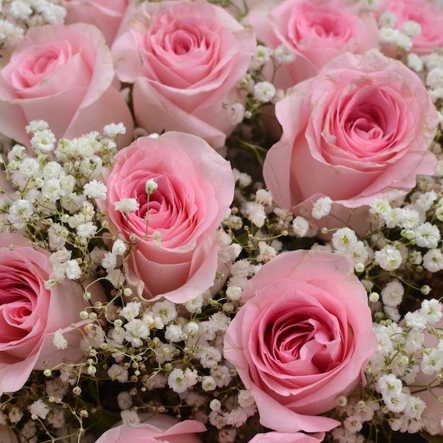Arreglo Floral Rosa Rosa Para El Fondo Descargar Fotos Premium