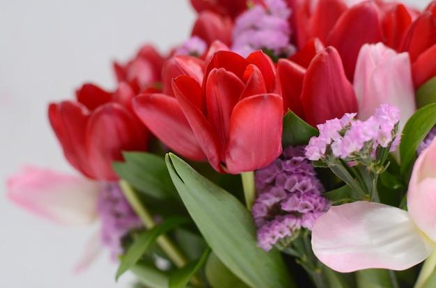 Arreglo Floral Del Tulipán Rojo En El Fondo Blanco