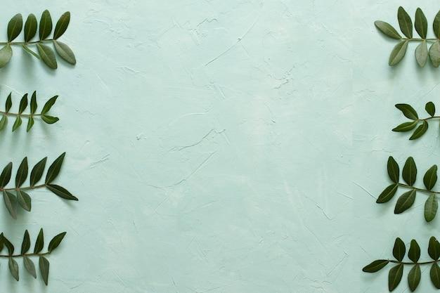 Arreglo de hojas verdes en fila sobre fondo verde Foto gratis