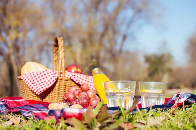 Arreglo de picnic en la temporada de otoño Foto gratis