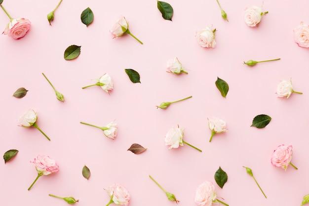 Arreglo de vista superior de hojas y flores Foto gratis