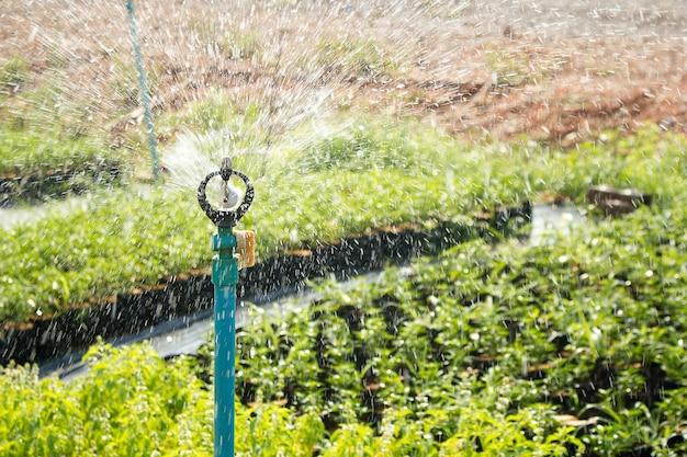 Aspersor sistema de riego de cerca sistema de irrigaci n for Sistema de riego jardin vertical