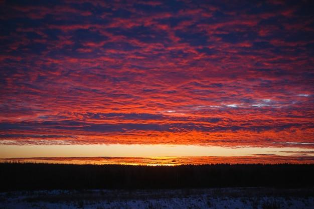 Atardecer en el campo. puesta de sol. cielo hermoso. Foto Premium