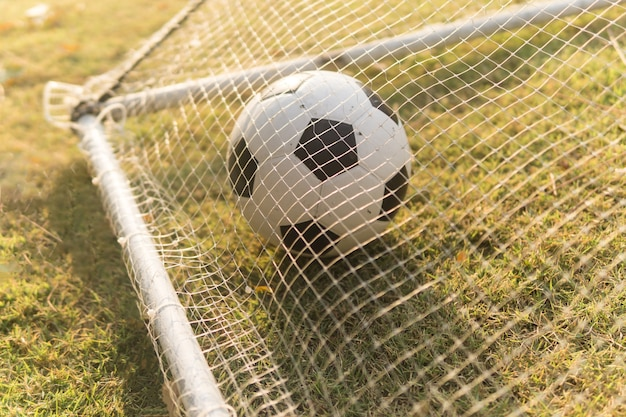 Balón de fútbol en hierba en goal.soccer bola en el sol de la mañana ... 6e7c6394ef85e