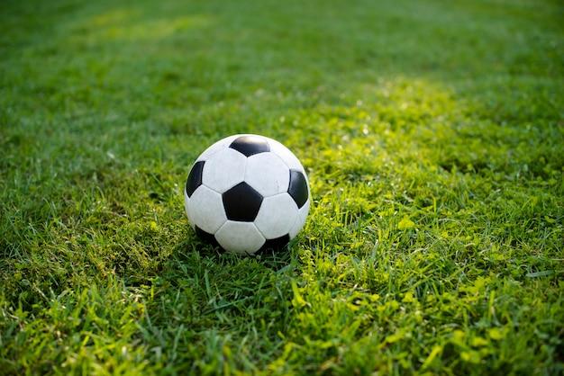 Balón de fútbol sobre césped verde en el parque Foto gratis
