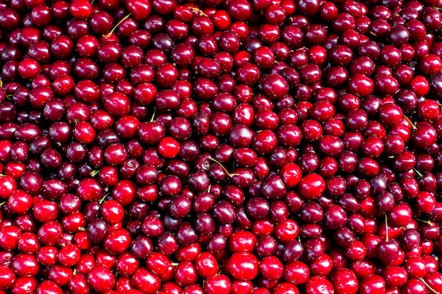 Baya roja cereza fresca fruta abstracta textura de fondo colorido Foto Premium