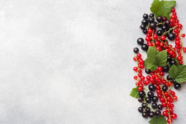 Bayas frescas de grosellas negras y rojas en la tabla gris con el espacio de la copia. Foto Premium