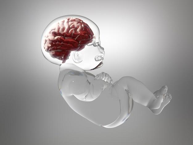 Bebé de cristal con cerebro dentro. Foto Premium