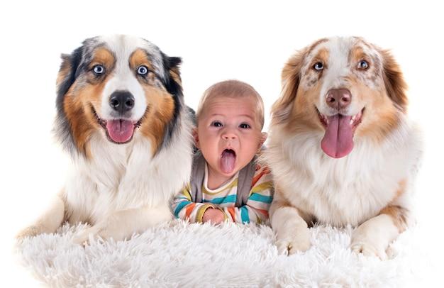 Bebes y perros Foto Premium