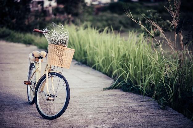 Bicicletas estacionadas en la calle en el parque. Foto gratis