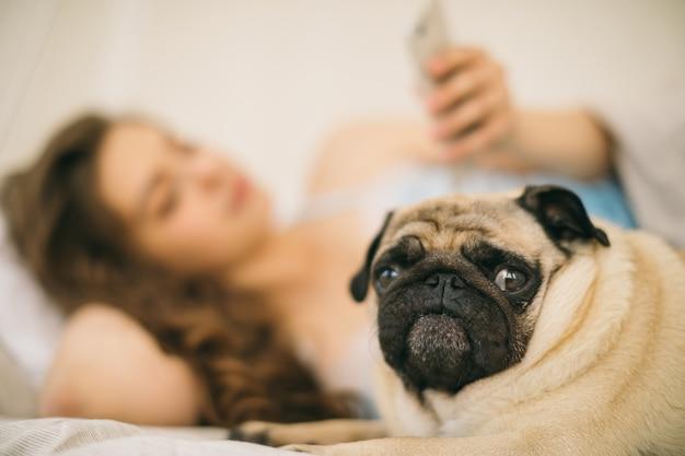 Blured mujer con celular en la cama. en primer plano el perro está enfocado Foto Premium