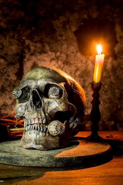 Bodegón con cráneo, vela y cabeza de opio marchita | Descargar Fotos ...