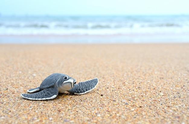 Bolas de tortuga en la playa Foto Premium