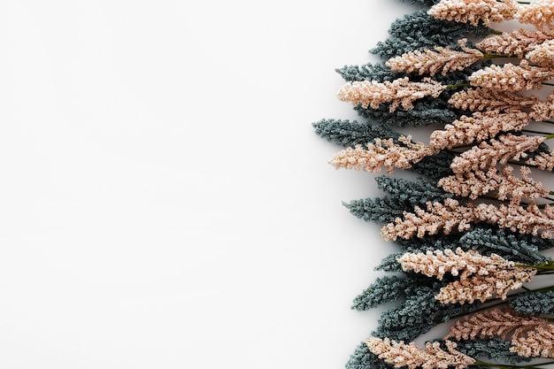 Bonita composición hecha con hojas de trigo sobre fondo blanco. Foto gratis