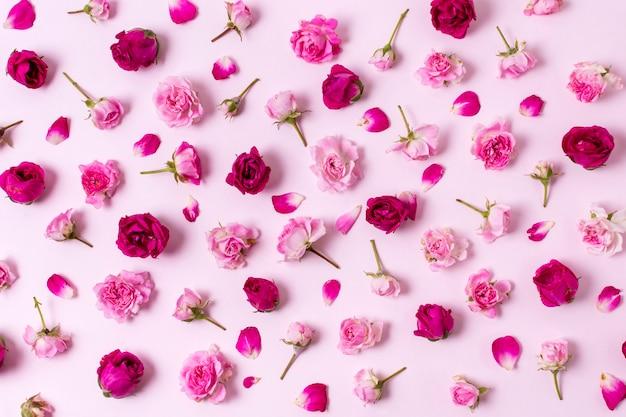 Bonito surtido de pétalos de rosa concepto Foto gratis
