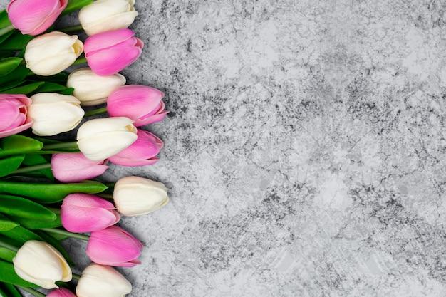 Bonitos tulipanes Foto gratis