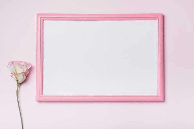Borde rosado marco blanco con flores eustoma contra el fondo Foto gratis