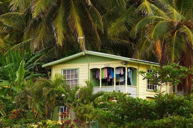 Bosque construcci n de casas de madera ex tica tropical - Casas de madera tropical ...