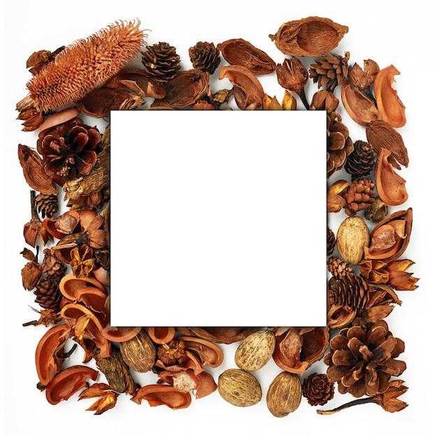 Bosque de otoño flores secas y pino conos marco. Foto Premium
